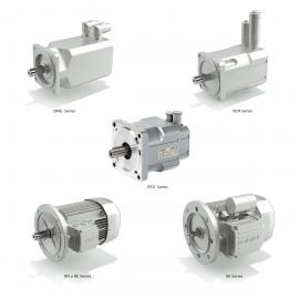 Série BN/BE/BS/BTD/BCR/BMD - Motores, Motofreios Elétricos Trifásicos e Monofásicos e Servomotores Bonfiglioli